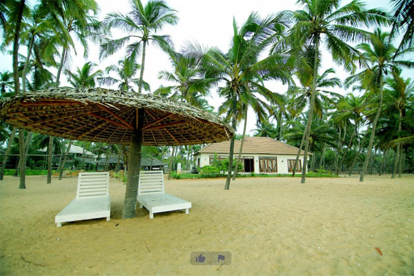 Malabar Ocean Front Resort and Spa facilities: Party area